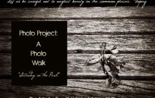 Photo Project: Photo Walk - Saturday in the Park | artofabeautifullife.com