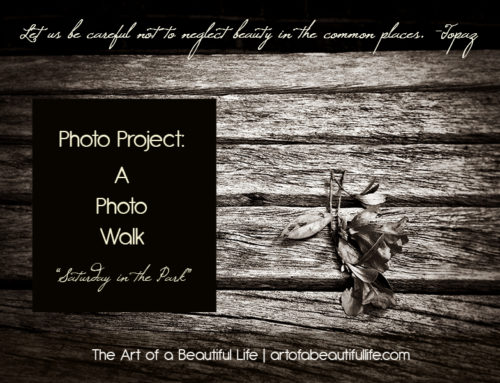 Photo Project: A Photo Walk (Saturday in the Park)