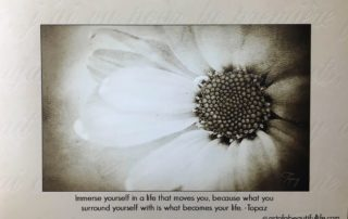 Immerse Yourself Quote - Inspirational Blog