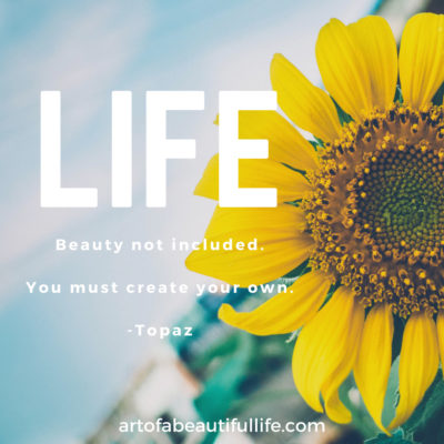 Beautiful Life Quote: Life. Beauty not included. You must create your own. -Topaz