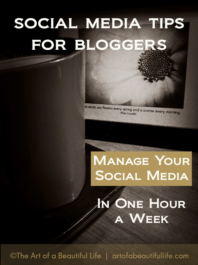 Schedule Social Media in One Hour a Week by artofabeautifullife.com